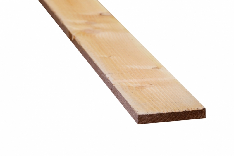 Douglas plank 22x100